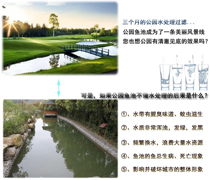 公园鱼池过滤系统设计水处理设备过滤设计方案