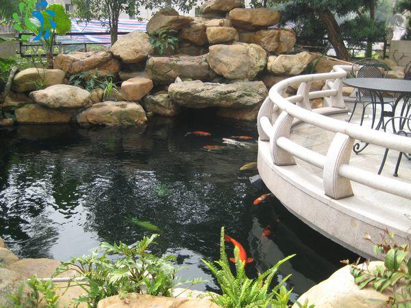 """(鱼池景观水处理)转载请注明出处.   佛山市顺德区金碧林水族用品有限公司成立于广东佛山市,是国内专注于景观水处理,景观水治理地产小区人工湖水处理的公司。专业景观水处理解决方案。金碧林创建于2006年,是国内最早的景观水处理公司。至今为止已为过3000多家的客户解决水处理方案。得到业界业者好评。公司创立的""""普滤仕""""景观水处理过滤材料及用品品牌深得客户的认可。 出品理念:为鲤打造一个""""清、爽、活、嫩""""的水环境。 服务对象:地产小区人工湖水处理 花园别墅景观水处"""