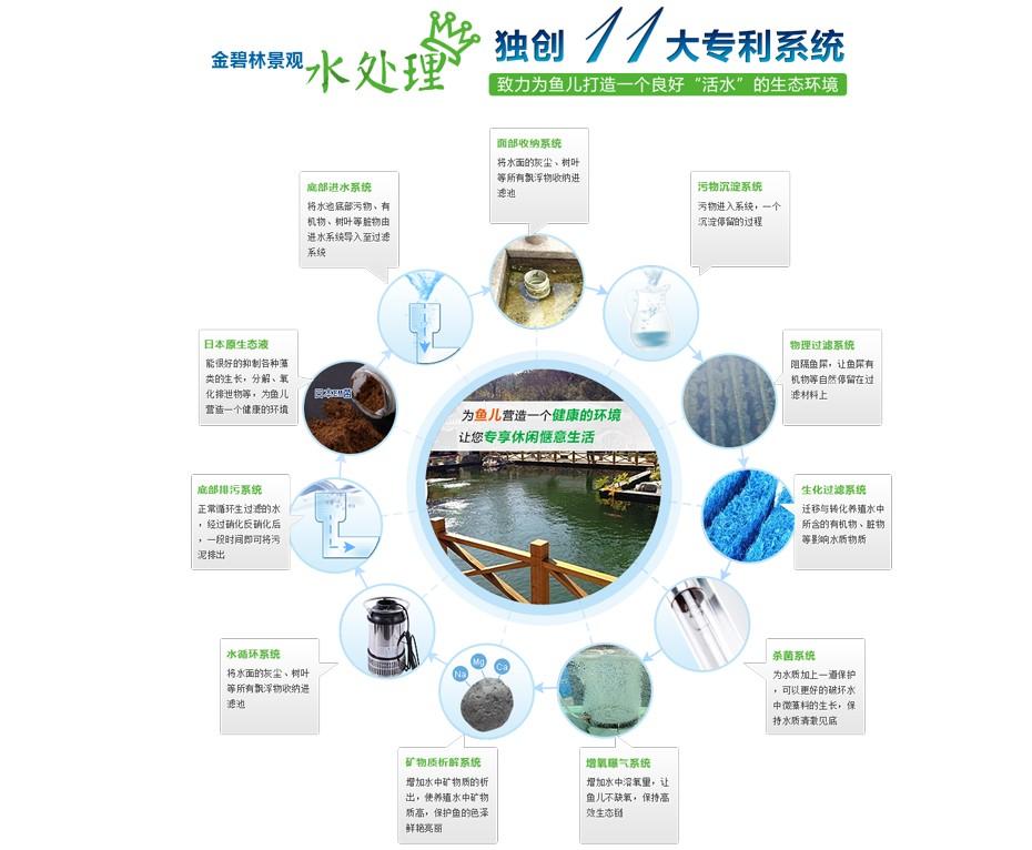 锦鲤鱼池过滤系统设计建造解决方案