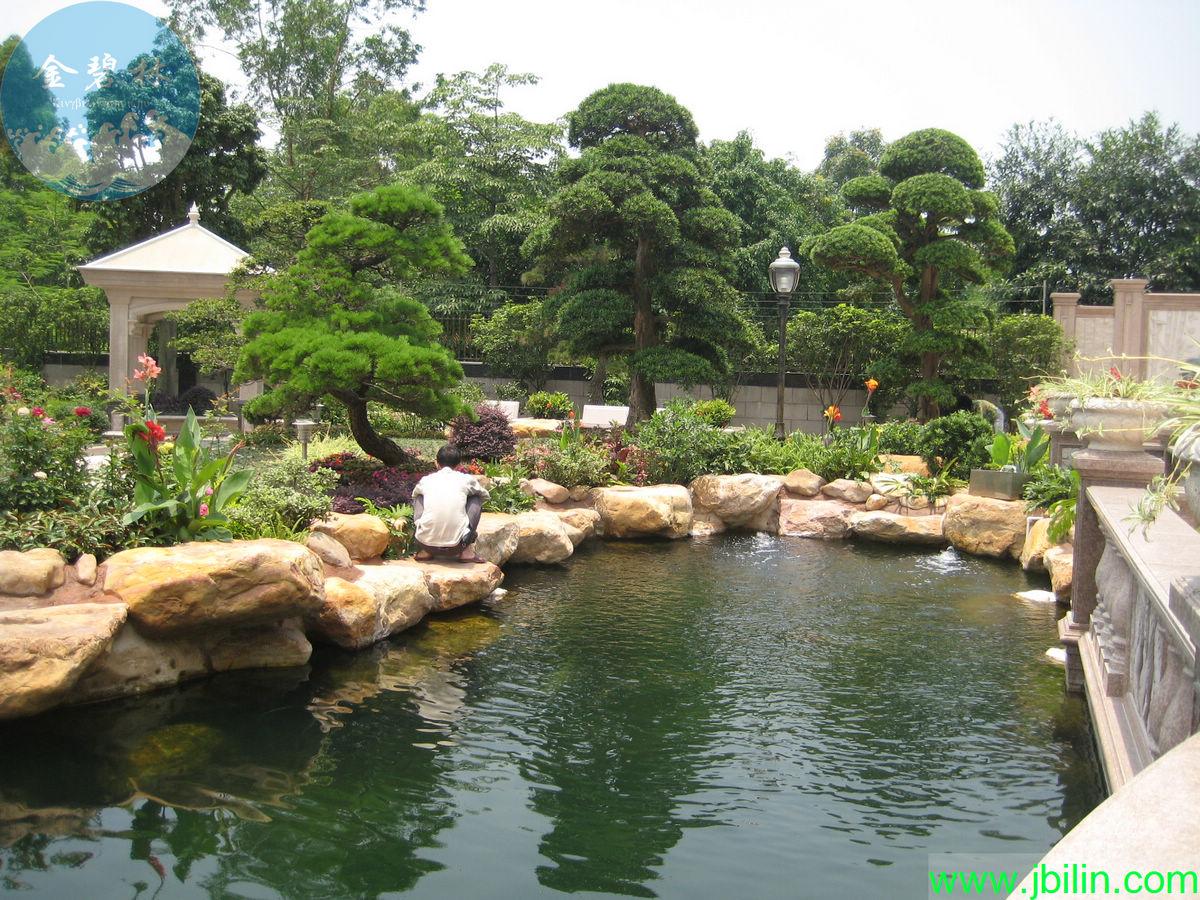 供应园林式锦鲤鱼池过滤系统工程方案