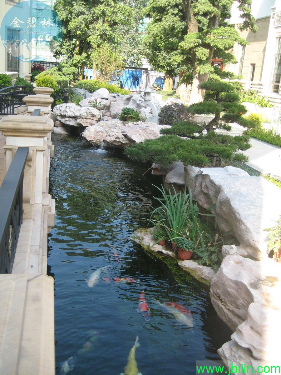 别墅景观鱼池过滤水处理方案