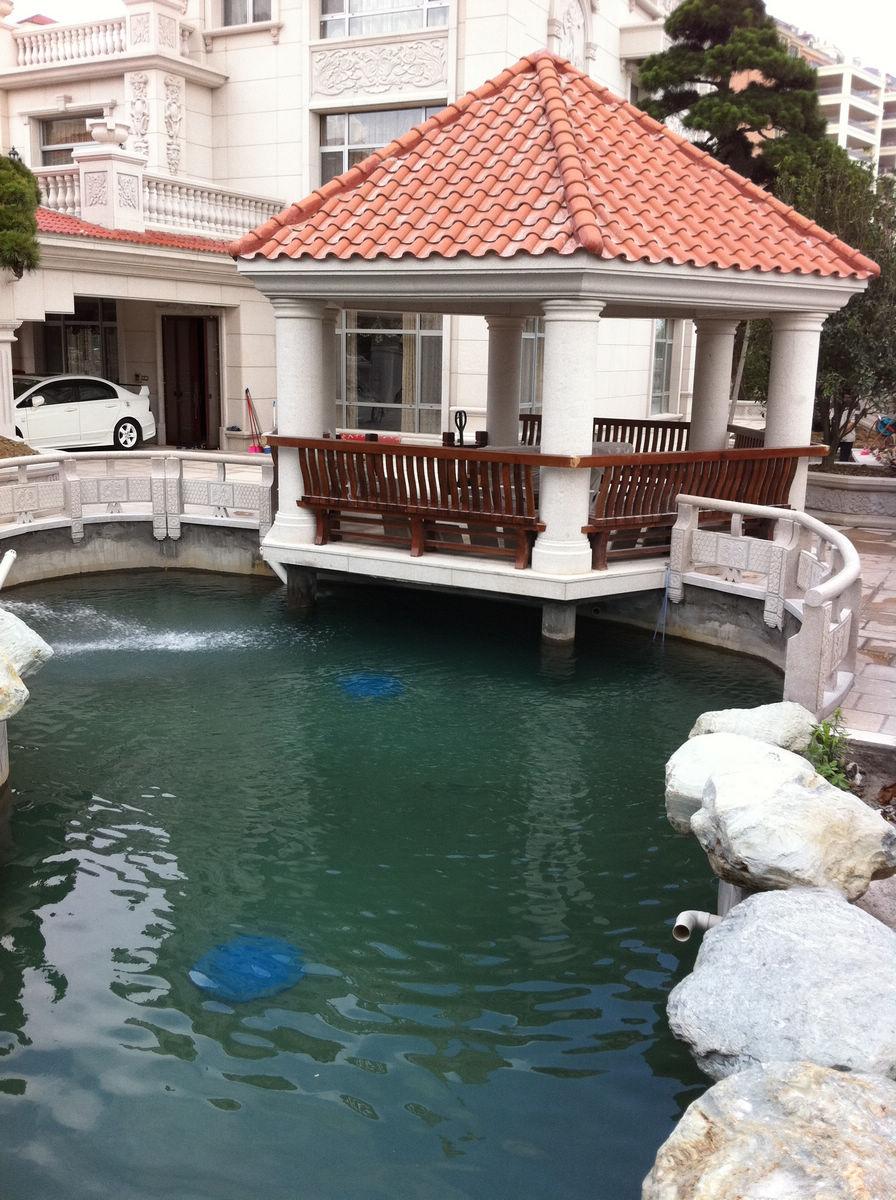 别墅锦鲤鱼池过滤工程