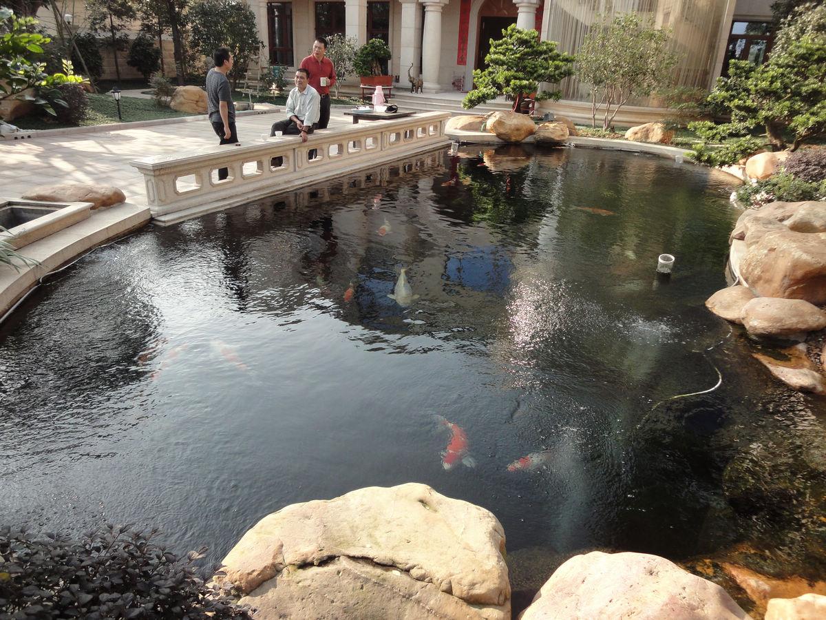 【家庭景观鱼池一体化水池设计过滤】价格