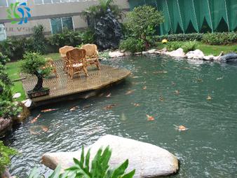 上市大型公司鱼池过滤系统设计解决水变绿、变臭、变浑浊