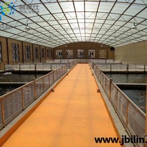锦鲤渔场鱼池设计规划,分布