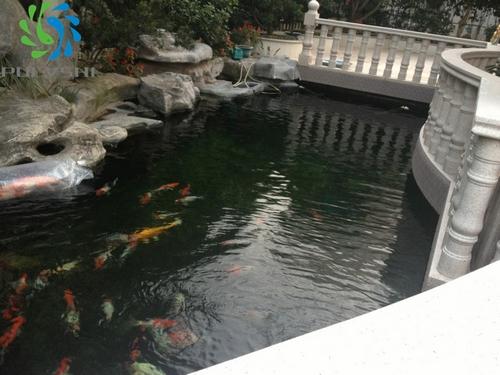 酒店假山鱼池设计方案